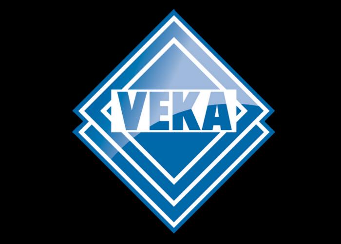 logo-v-6